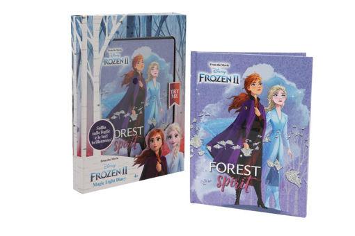 Diario Segreto Frozen 2