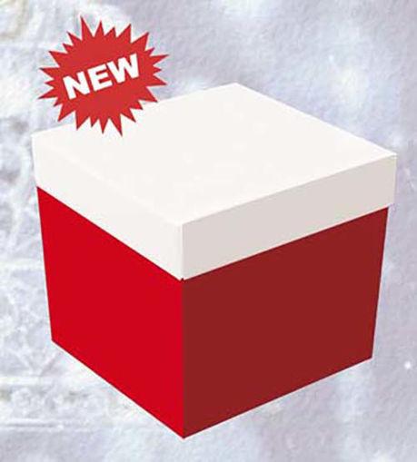 Big Skatush Scatola Regalo porta palloncini 60x60x60 Rossa con coperchio Bianco