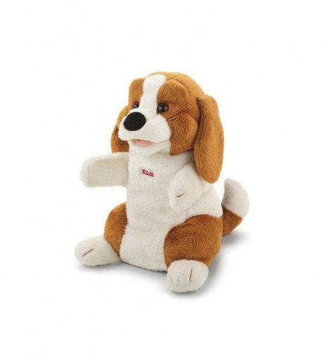 Marionetta Beagle
