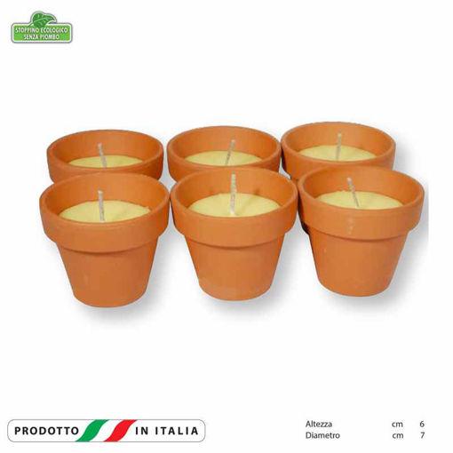 Vasetti in terracotta ala Citronella 50 grammi 6 pezzi